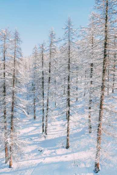 Skiing In Montgenevre, France (22)