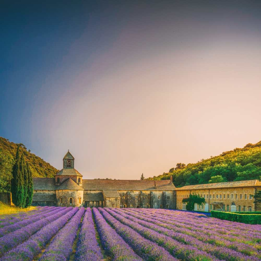 9 Beautiful Wine Regions In France You Need To Holiday In (26)