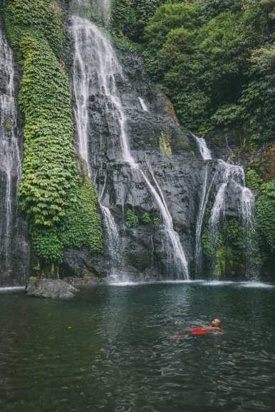 The Amazing Banyumala Twin Waterfalls In The Jungles Of Bali (18)