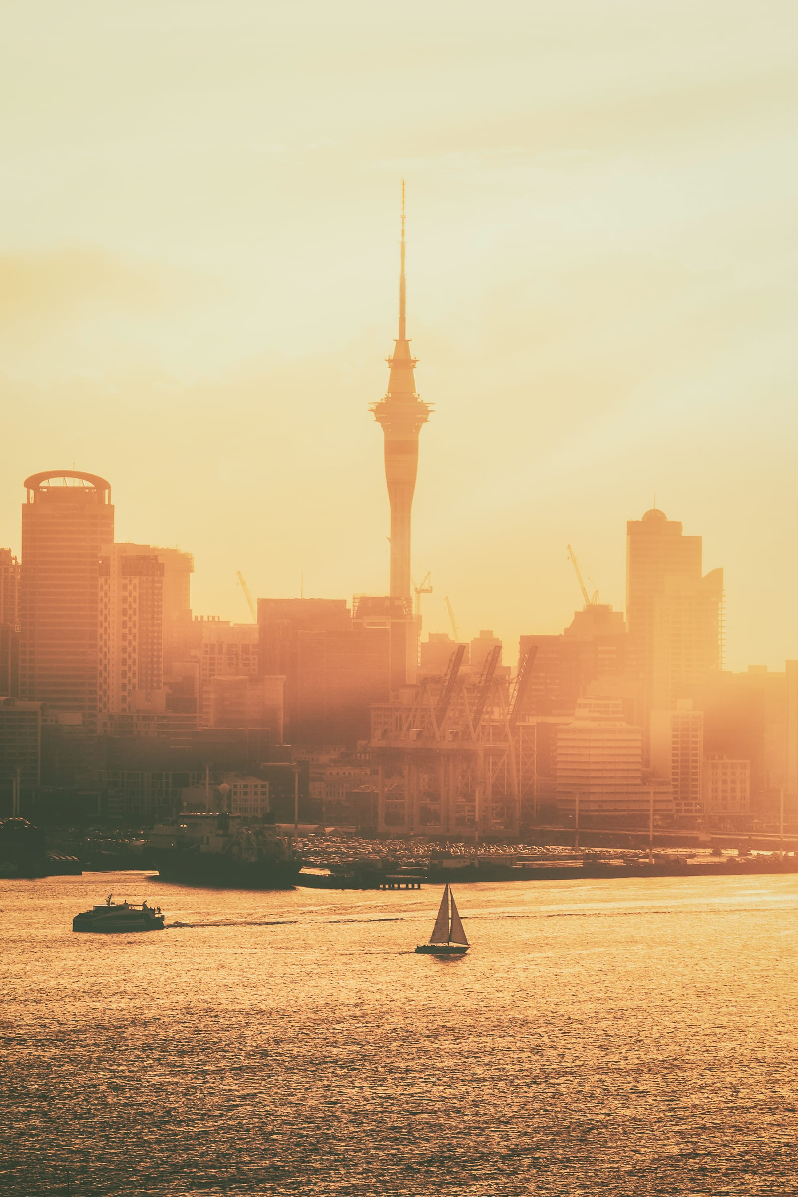 Best Things To Do In Auckland (8)