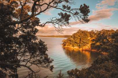 Best Things To Do In Auckland (17)