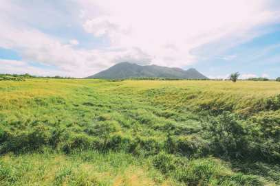 Rugged Coastlines, Old Forts And Lobster Dinners... On The Caribbean Island Of St Kitts (26)
