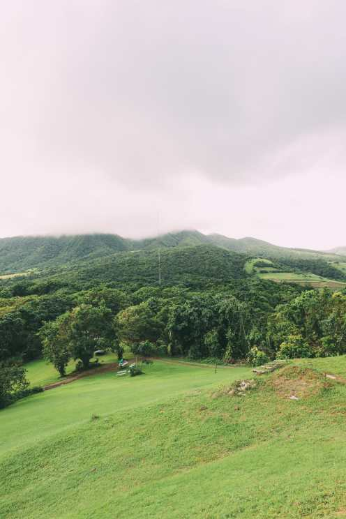 Down At The Beach House... In St Kitts, The Caribbean (35)
