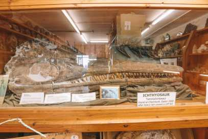 Searching For Dinosaurs And Fossils On The Jurassic Coast Of England (12)