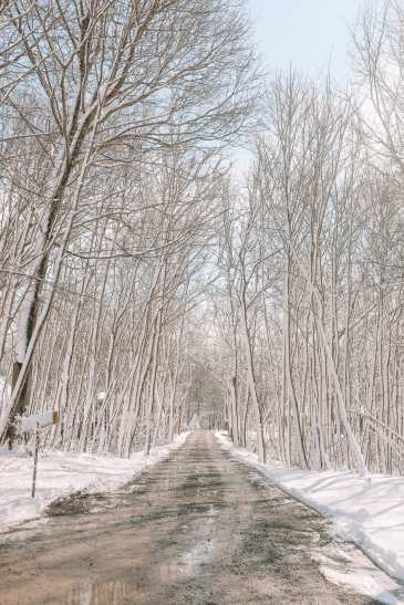 Ice Wine And Snow Storms... In Niagara-on-the-Lake, Canada (53)