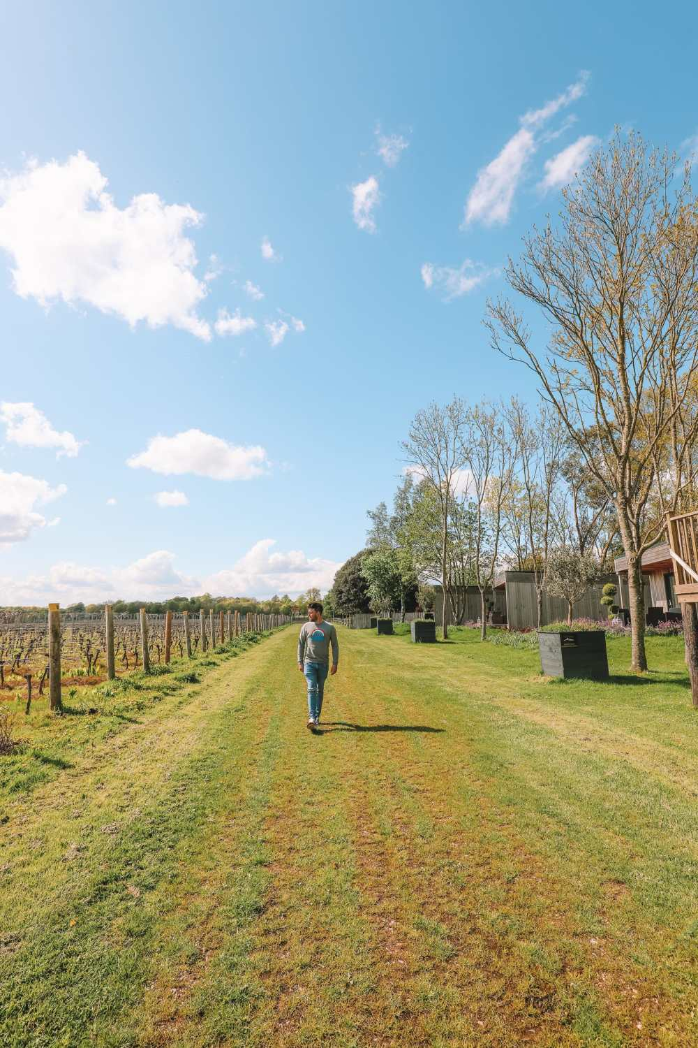 Where To Visit (And Stay) In A Vineyard In England (25)