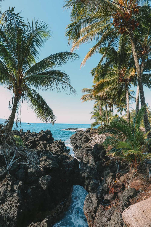 24 Hours In Maui, Hawaii (45)