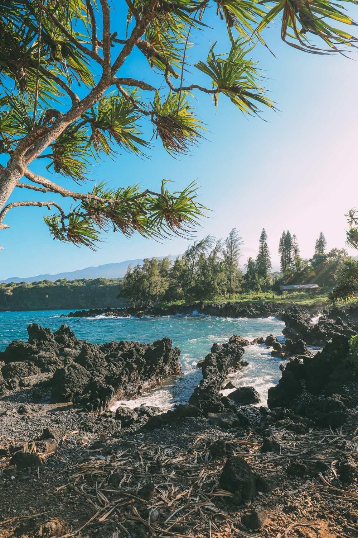 24 Hours In Maui, Hawaii (50)