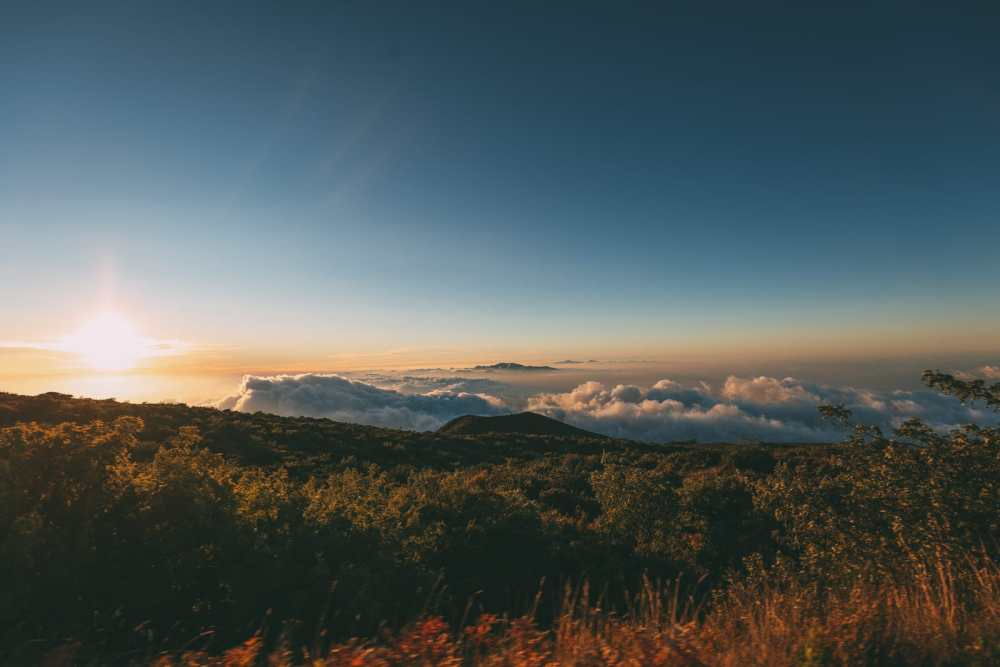 24 Hours In Maui, Hawaii (59)