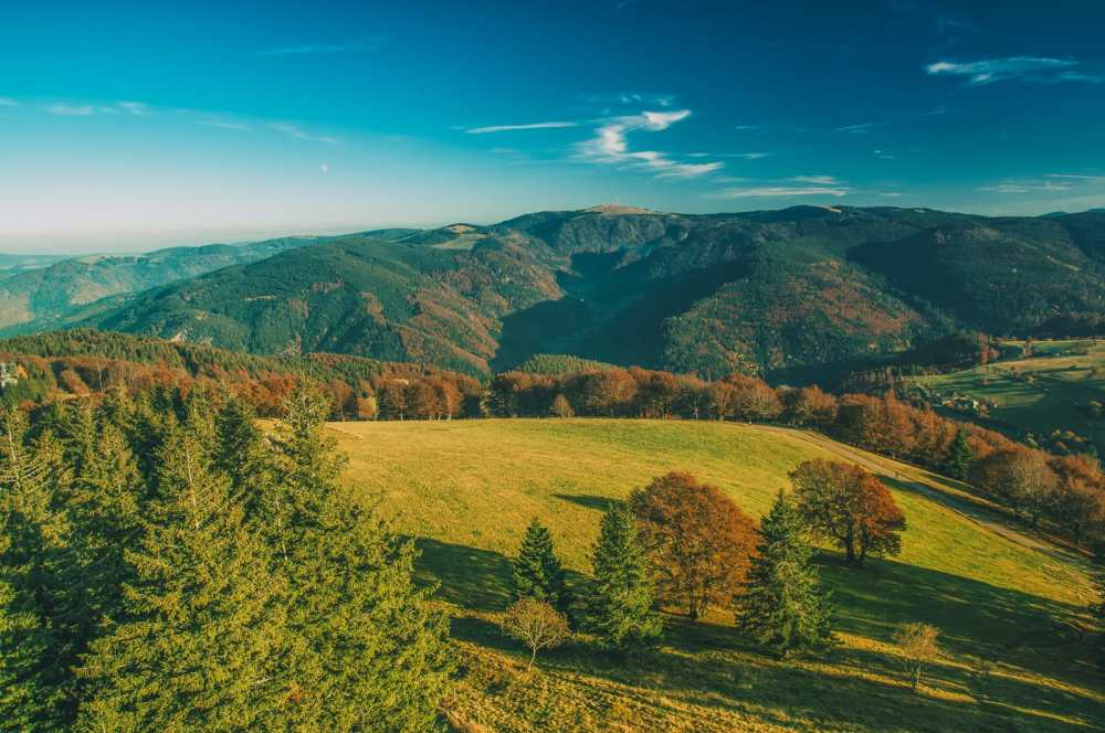 The 12 Best Hikes In Germany You Have To Experience (9)