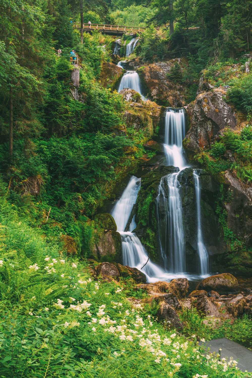 The 12 Best Hikes In Germany You Have To Experience (3)