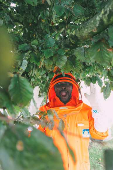 How To Be A Bee-Keeper For A Day In England (1)