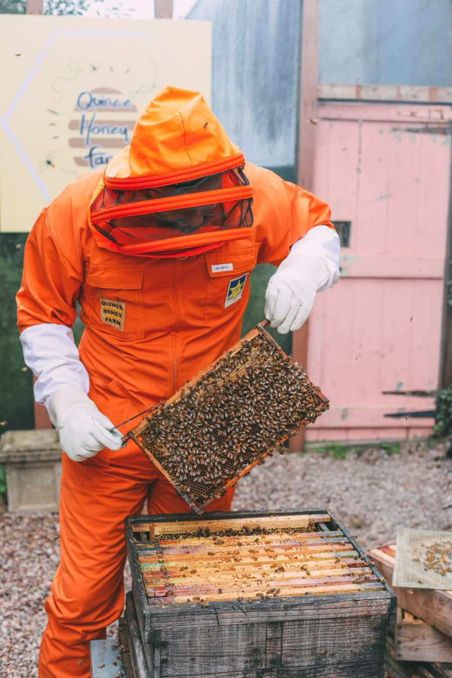 How To Be A Bee-Keeper For A Day In England (11)