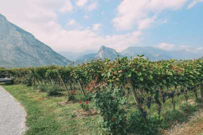 Where To Eat And Drink In Lake Garda, Trentino, Italy (24)