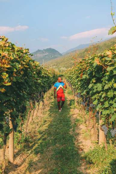 Where To Eat And Drink In Lake Garda, Trentino, Italy (31)