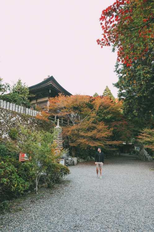 Exploring The Island Of Kyushu, Japan (41)