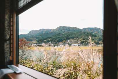 The Aru Ressha Sweet Train, Pretty Little Mamedamachi And A Night In Fukuoka, Japan (20)