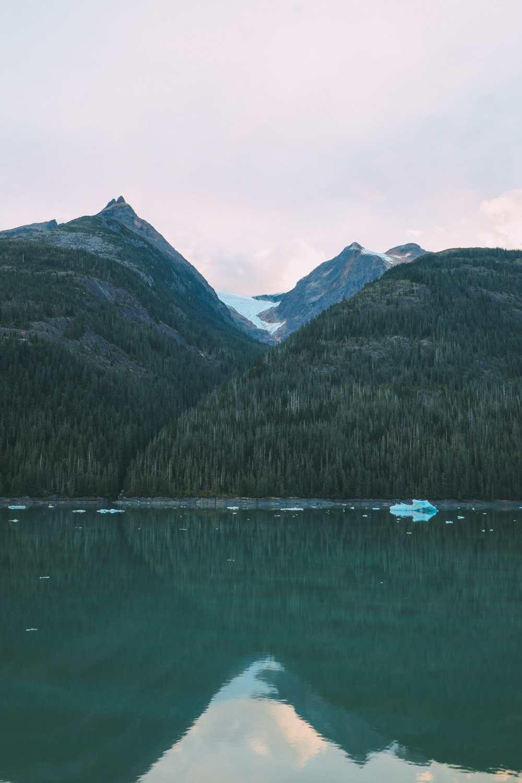 Sailing The Impressive Tracy Arm And Endicott Arm Fjord To The Dawes Glacier, Alaska (5)