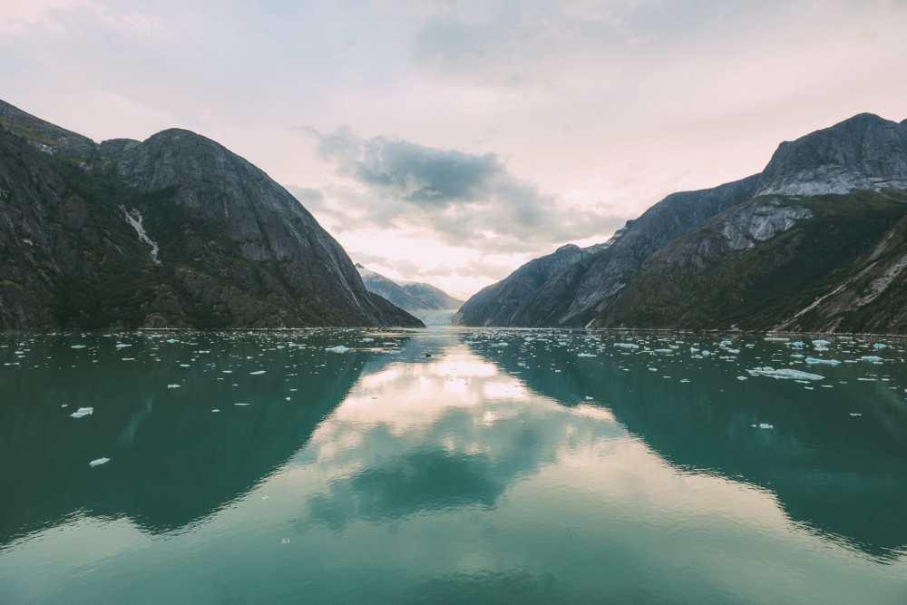 Sailing The Impressive Tracy Arm And Endicott Arm Fjord To The Dawes Glacier, Alaska (21)