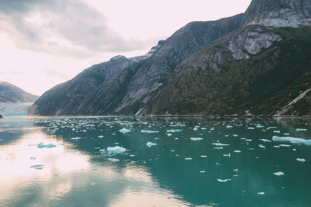 Sailing The Impressive Tracy Arm And Endicott Arm Fjord To The Dawes Glacier, Alaska (22)