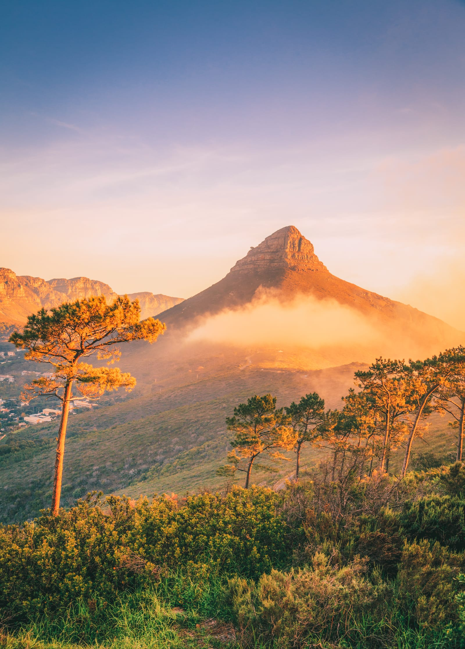 The 12 Best Hikes In South Africa You Have To Experience (14)