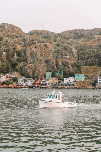 24 Hours In St Johns, Newfoundland (1)