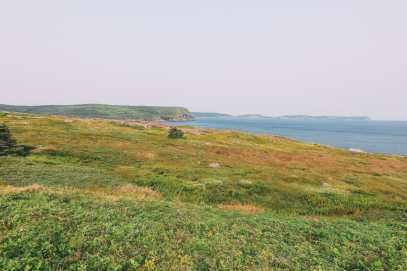 24 Hours In St Johns, Newfoundland (6)