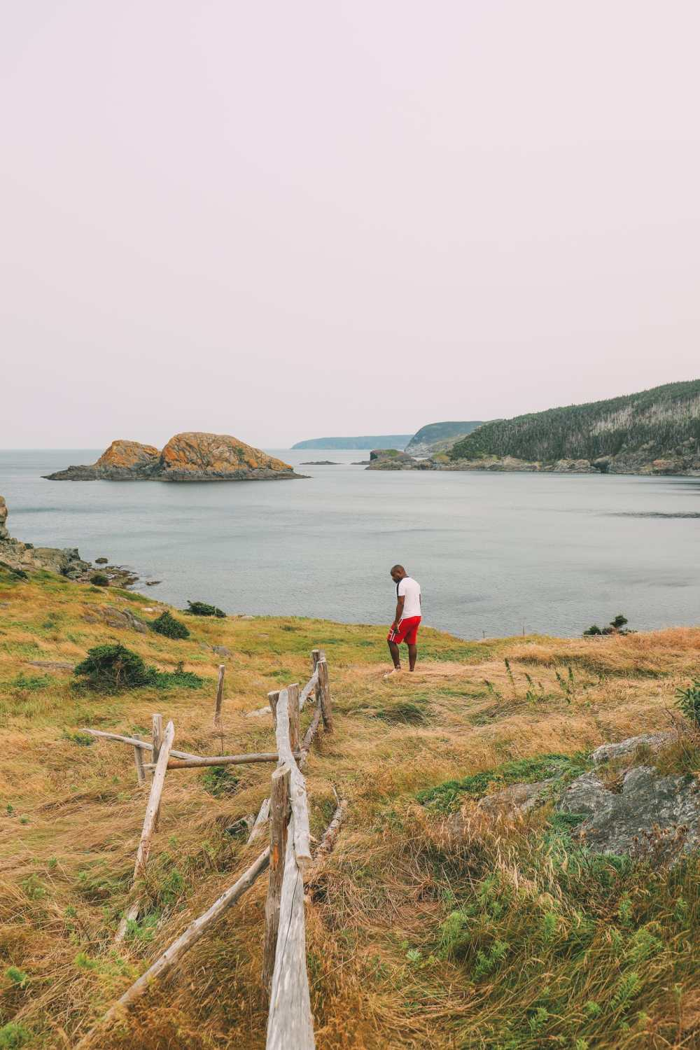 24 Hours In St Johns, Newfoundland (40)