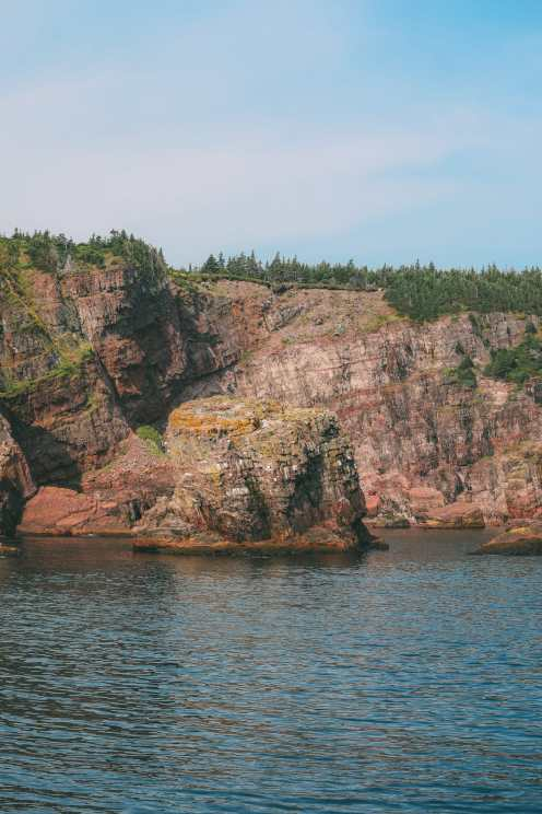 Searching For Puffins In Newfoundland, Canada (2)