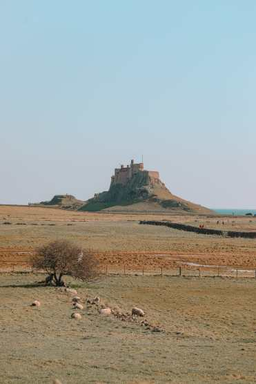 Visiting the Holy Island of Lindisfarne, England (30)