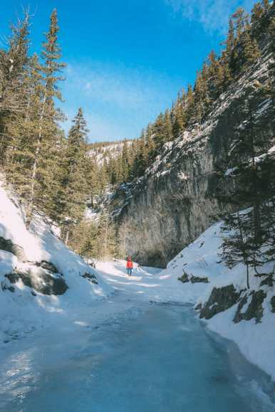 Grotto Canyon, Wolfdogs And The Canadian Rockies (8)