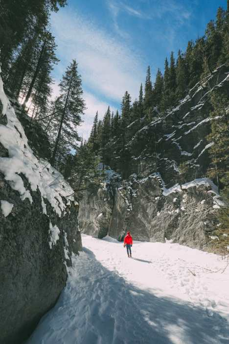 Grotto Canyon, Wolfdogs And The Canadian Rockies (10)