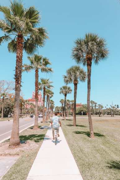 Sunny Days In St Pete Beach, Florida... (52)