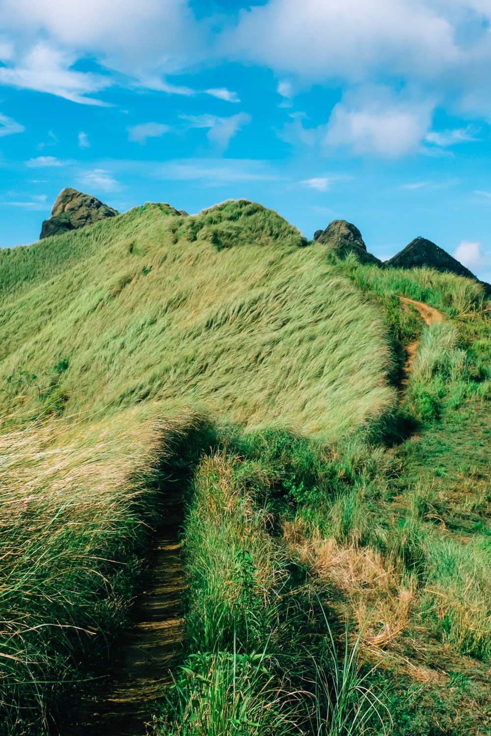 The 12 Best Hikes In The Philippines You Have To Experience (5)