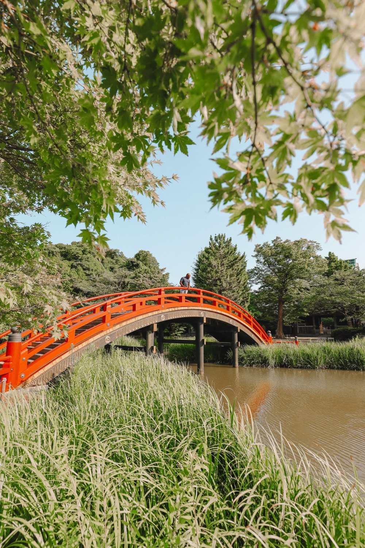Temple Searching And Traditional Ryokans In Yokohama - Japan (13)
