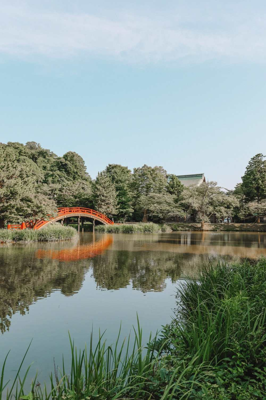Temple Searching And Traditional Ryokans In Yokohama - Japan (6)
