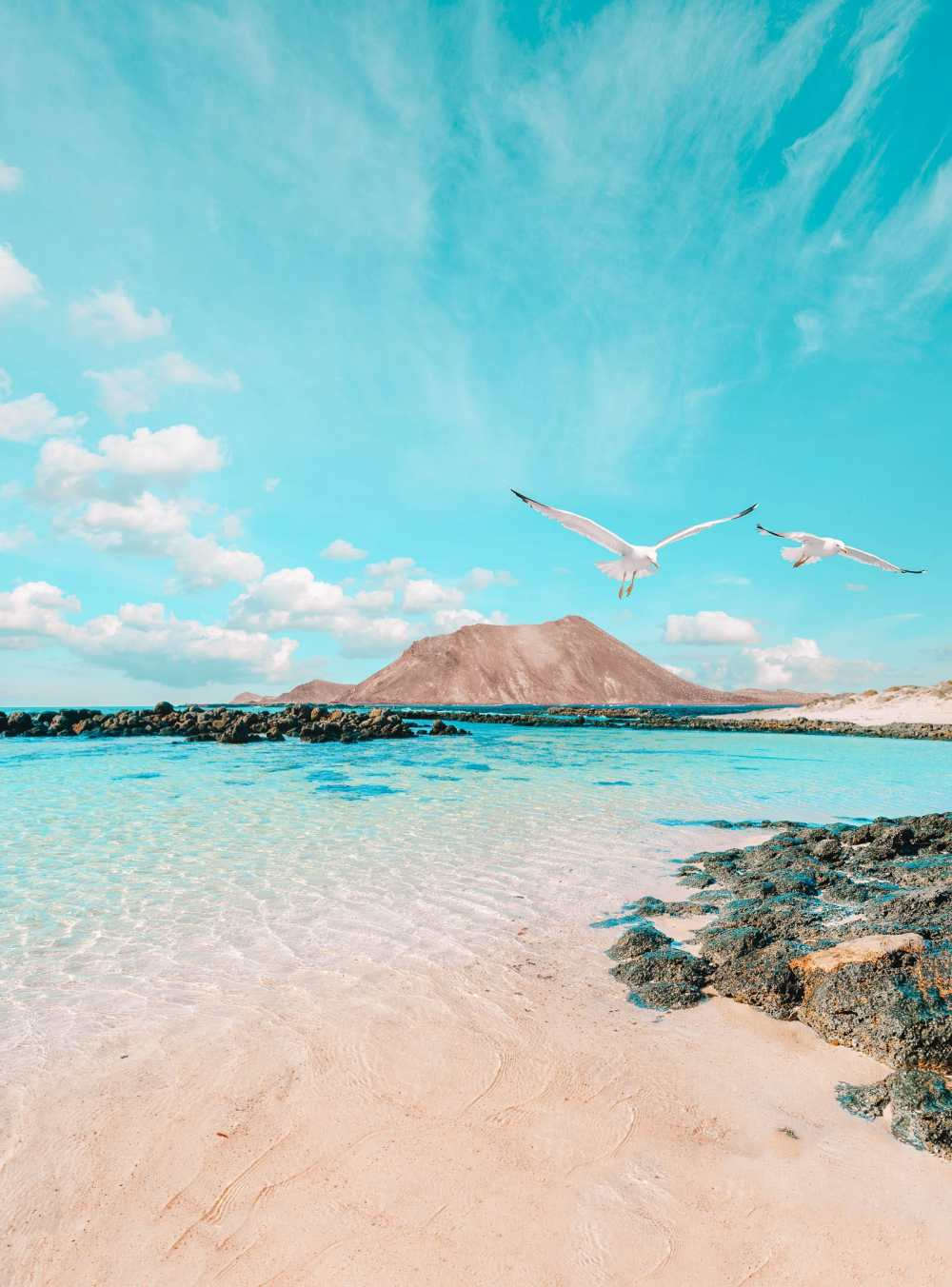 14 Best Things To Do In Fuerteventura (18)