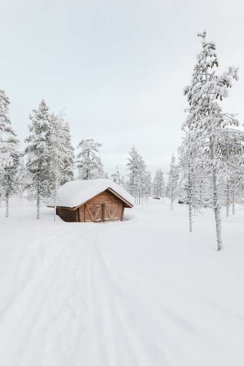The Northern Lights Village And Star Arctic... In Lapland, Finland (9)