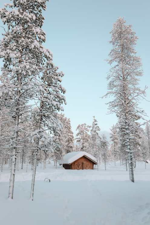 The Northern Lights Village And Star Arctic... In Lapland, Finland (22)