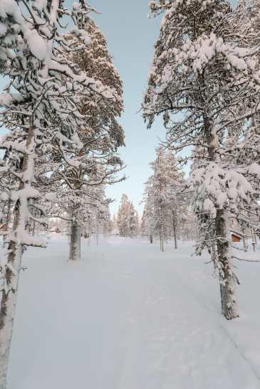 The Northern Lights Village And Star Arctic... In Lapland, Finland (28)