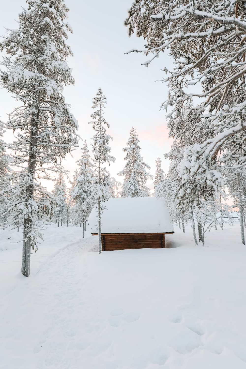 The Northern Lights Village And Star Arctic... In Lapland, Finland (30)