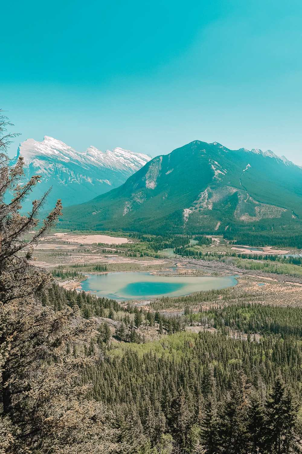 11 Best Hikes In Alberta (6)