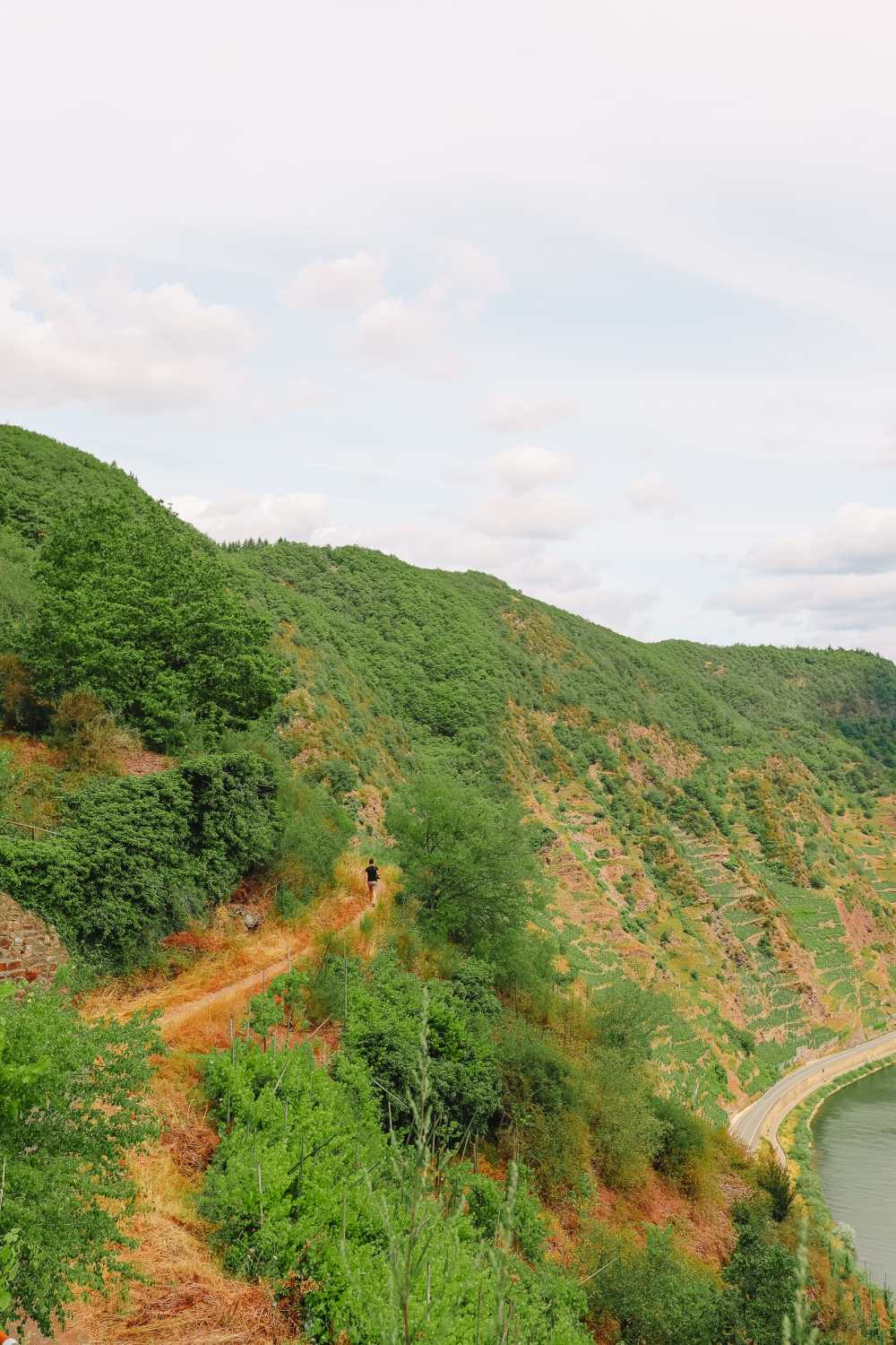 The Incredible Moselle Loop And Beautiful Town Of Bernkastel Kues In Germany (4)