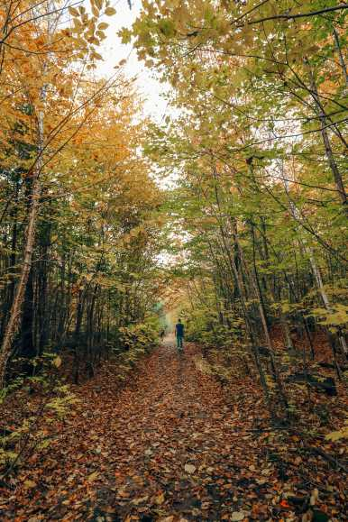 Getting Lost In Nature (And With Beavers) In Quebec, Canada (32)