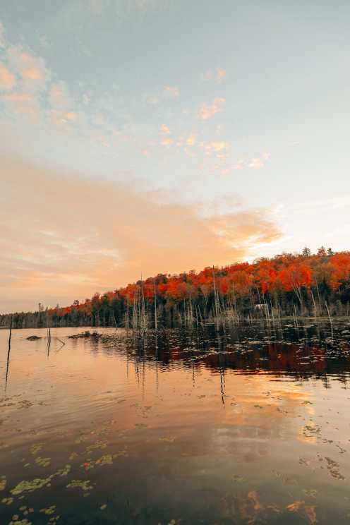 Getting Lost In Nature (And With Beavers) In Quebec, Canada (34)