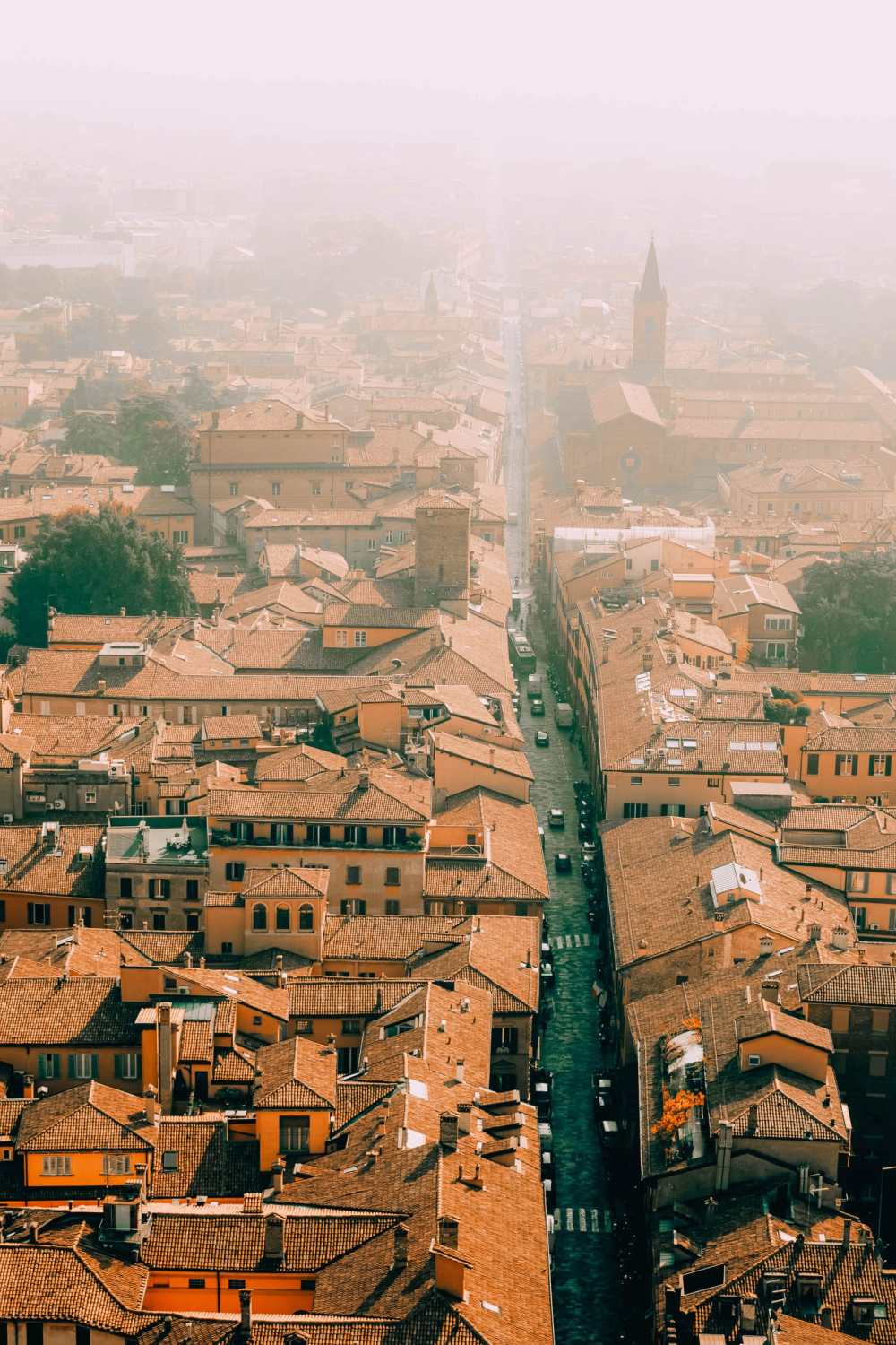 Best Things To Do In Bologna (10)