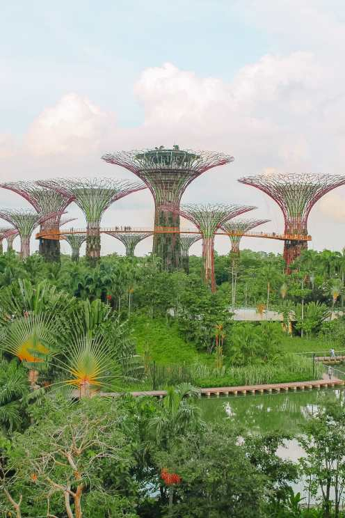 10 Unexpected Fun Things To Do In Singapore (47)