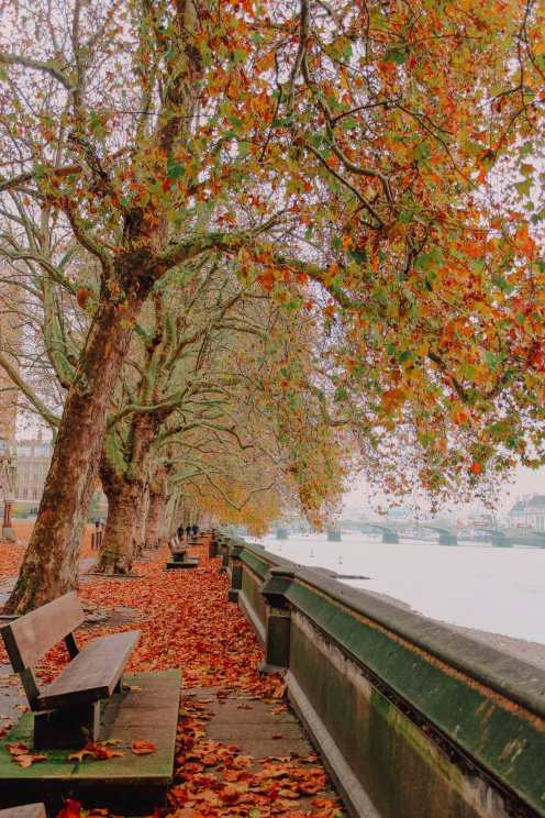 Best Things To Do In London (9)