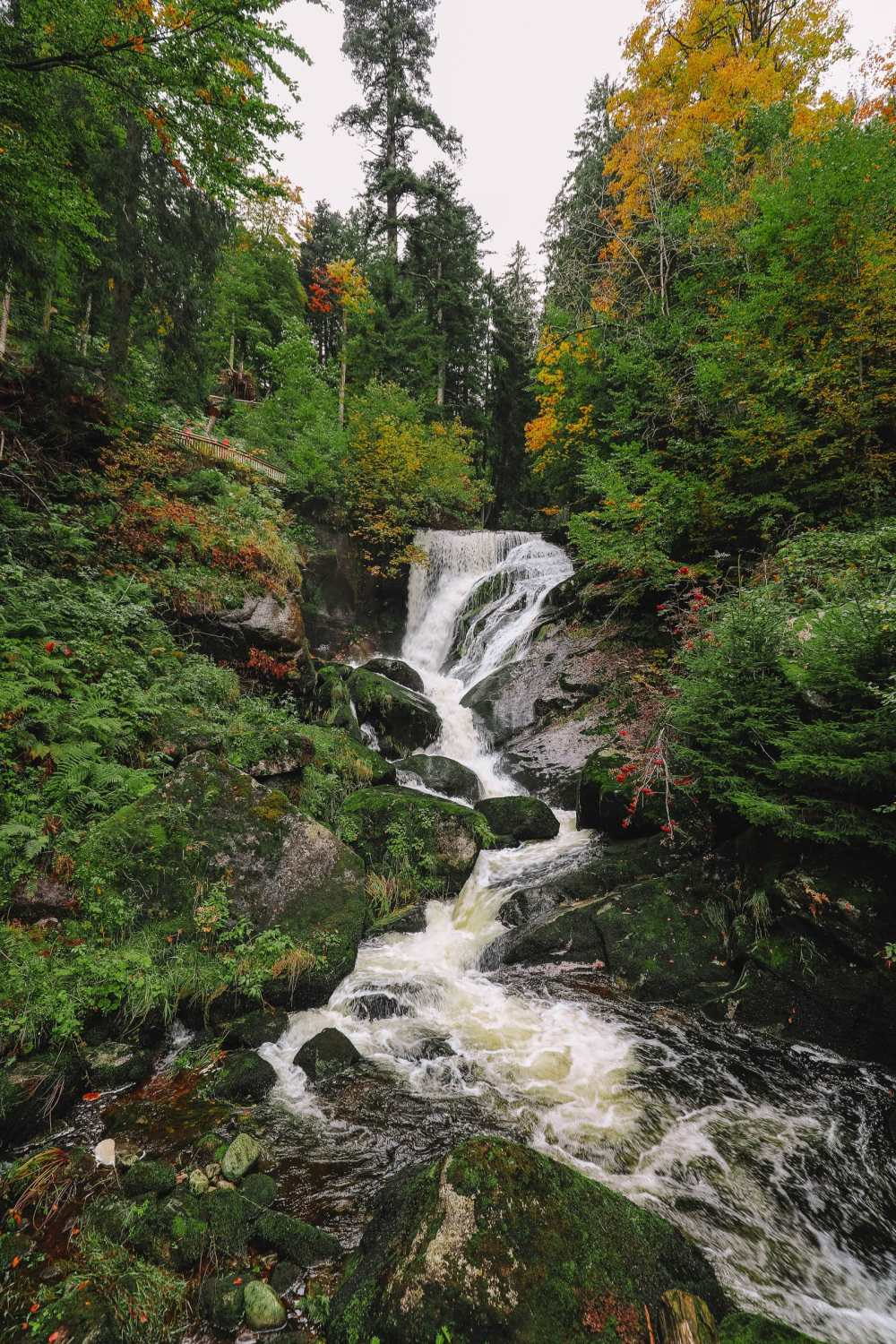 Best Things To Do In The Black Forest (32)