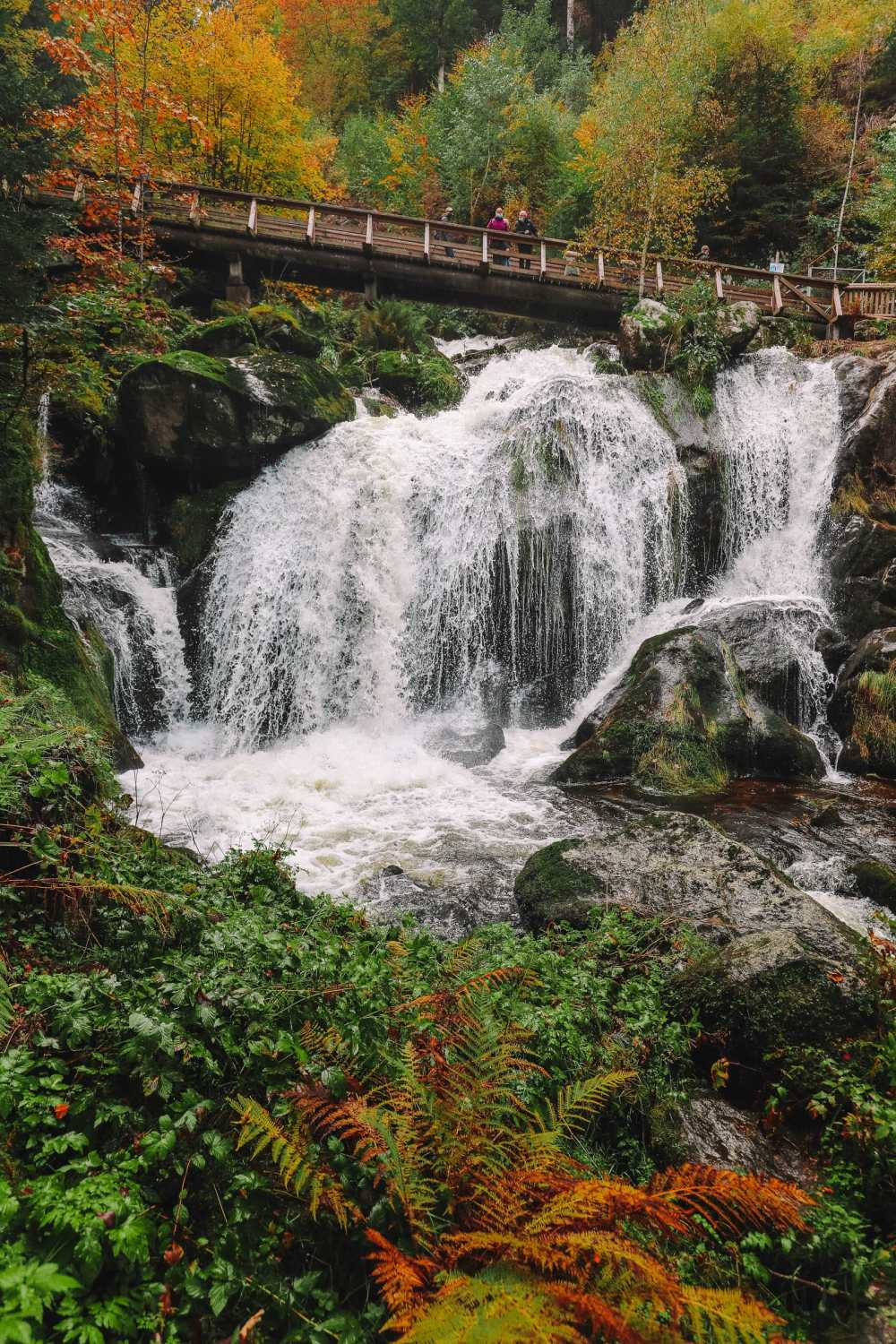 Best Things To Do In The Black Forest (34)